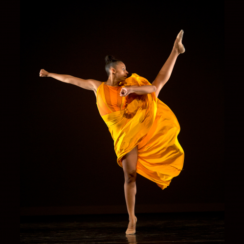 PHOTO OF TAJA FOOKS-THORNTON - RUTGERS IN NEW YORK AT JOYCE THEATER MONDAY, DECEMBER 4, 2017, IN NEW YORK CITY