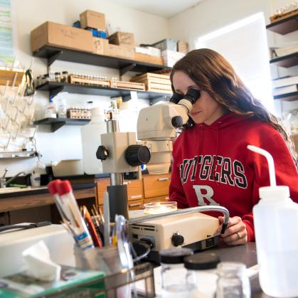 Rutgers–University New Brunswick research