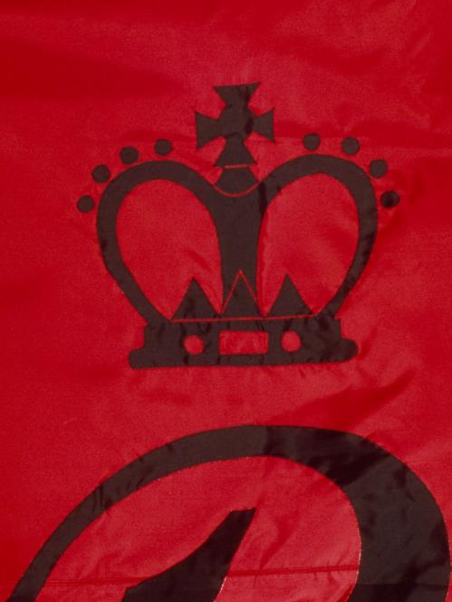 Detail of the crown from Rutgers' 1766 flag