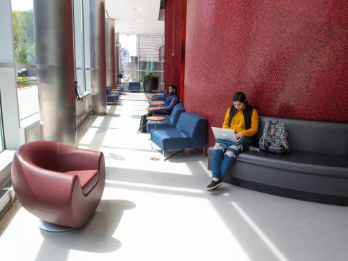 Students studying in the lobby