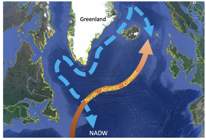A corrente quente do Atlântico Norte (mais ao norte da corrente do Golfo) leva calor ao norte da Europa. Torna-se mais fria e mais salgada, eventualmente afundando para formar a fria Água Profunda do Atlântico Norte (NADW). Imagem: Yair Rosenthal